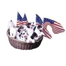 National Anthem dogs wooden jigsaw puzzle